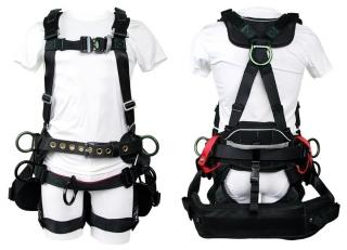 Buckingham BuckTech Tower Harness