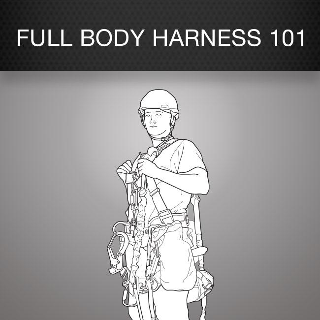 Full Body Harness 101